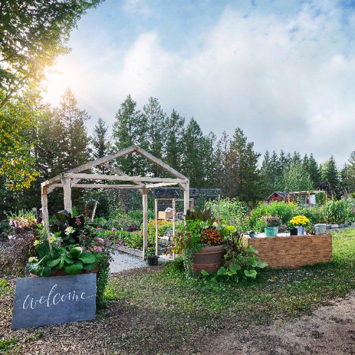 In the Garden Outdoor Workshops